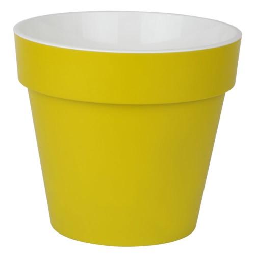 Протея Фисташковая 2.3 л -  кашпо с вкладкой