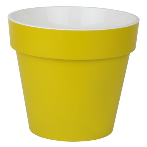 Протея Фисташковая  1.4 л -  кашпо с вкладкой